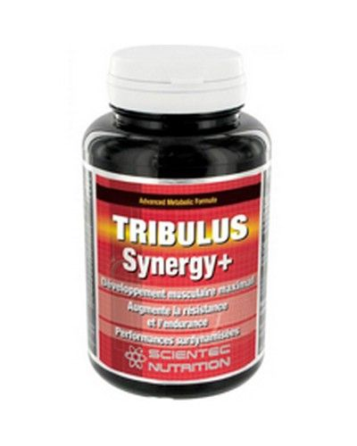 Scientec Nutrition Tribulus Synergy + 90 Gélules